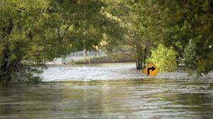 Emergency Relief in Louisiana